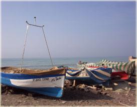 Pesca en Balerma