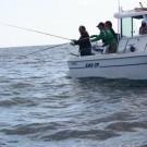 huelvaya.pesca-balerma